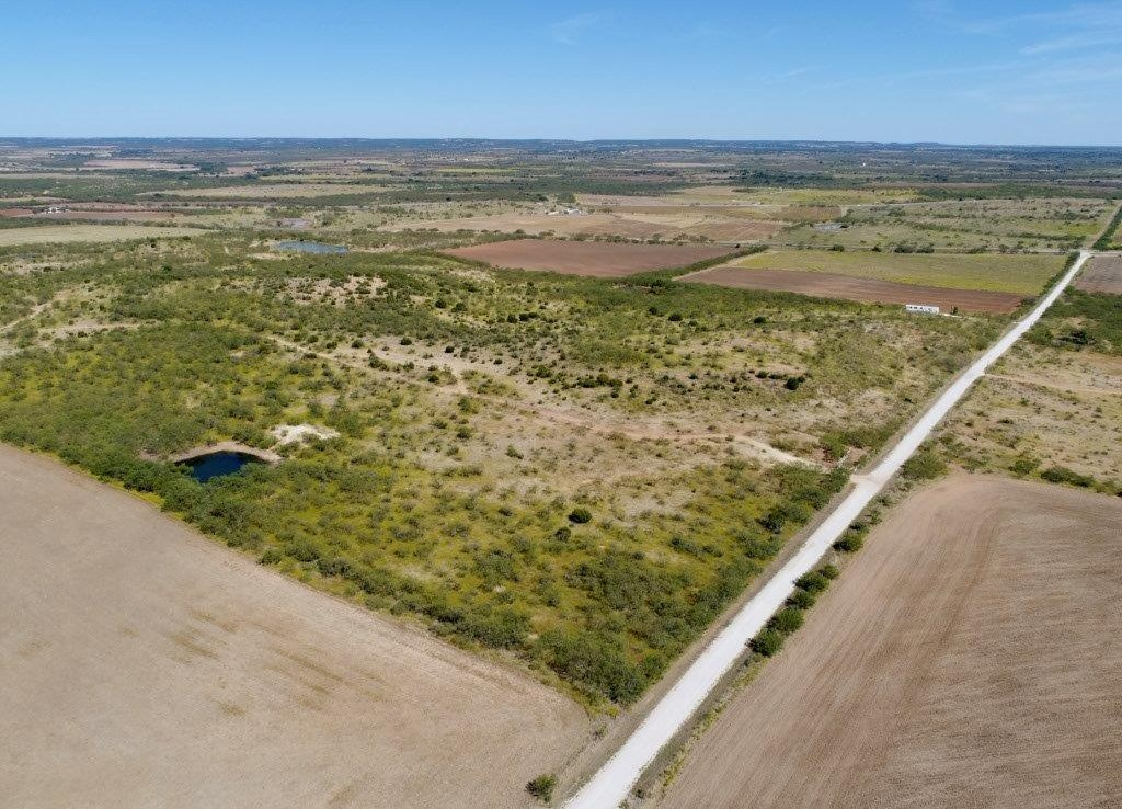313 acres in Taylor County