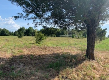 22.5 acres in Red River County
