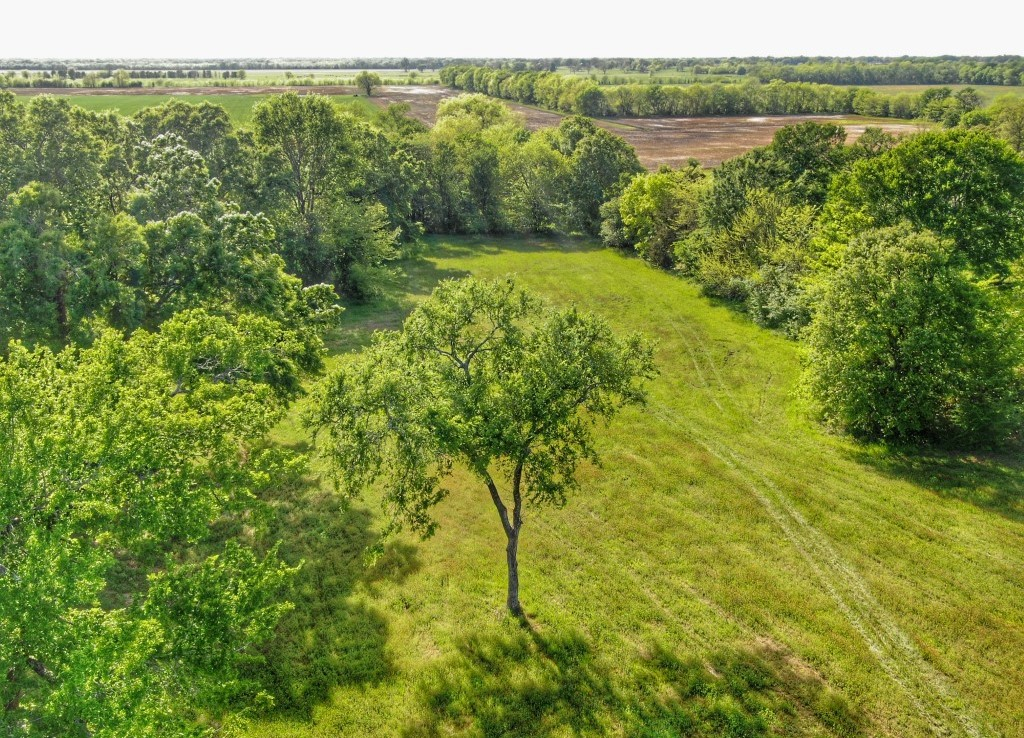 1,511 acres in Delta County