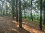 3 acres in McCurtain County