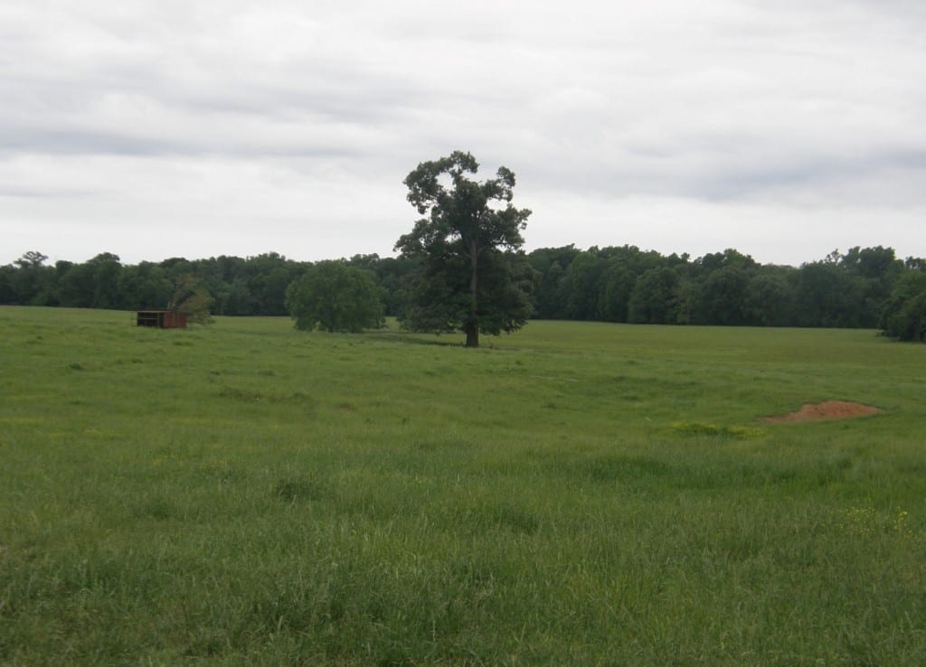 327 acres in Red River County