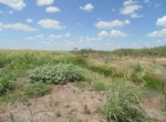 250 acres in Taylor County