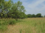 10 acres in Taylor County