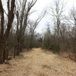 59 acres in Lamar County