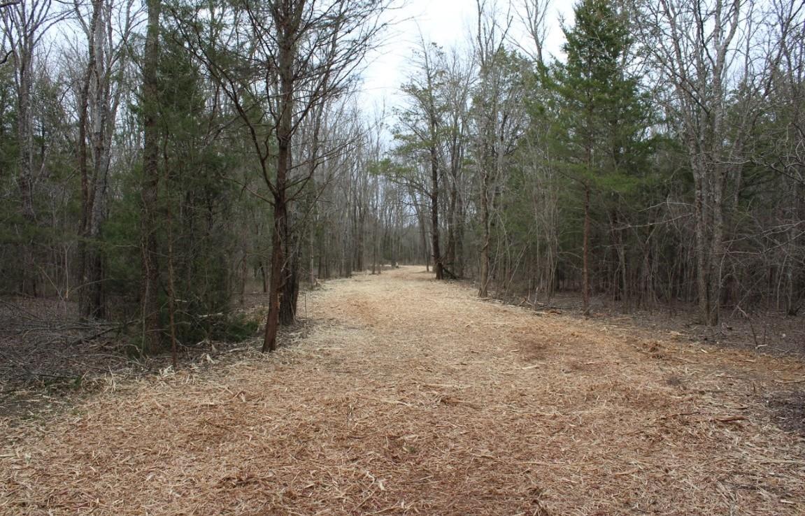 59 acres in Lamar County