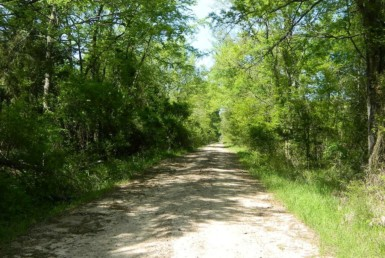 33 acres in Red River County