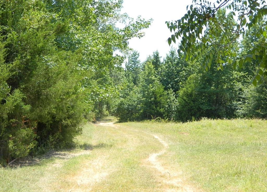204 acres in Red River County