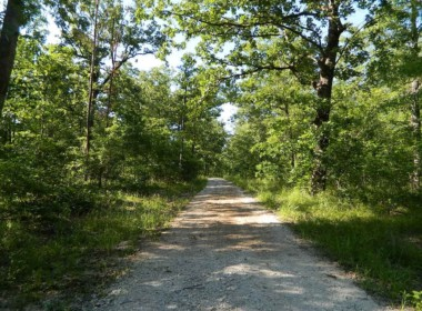 36.8 acres in Red River County