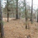 19 acres in Red River County