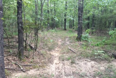 59 acres in Red River County