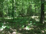25 acres in Red River County