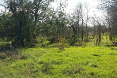 79 acres in Haskell County