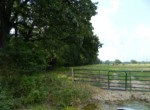 20 acres & Home in Red River County