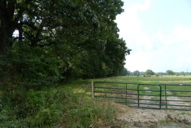 124 acres in Red River County