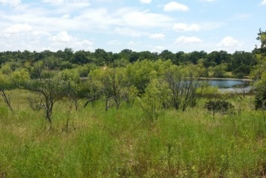 70 acres in Eastland County