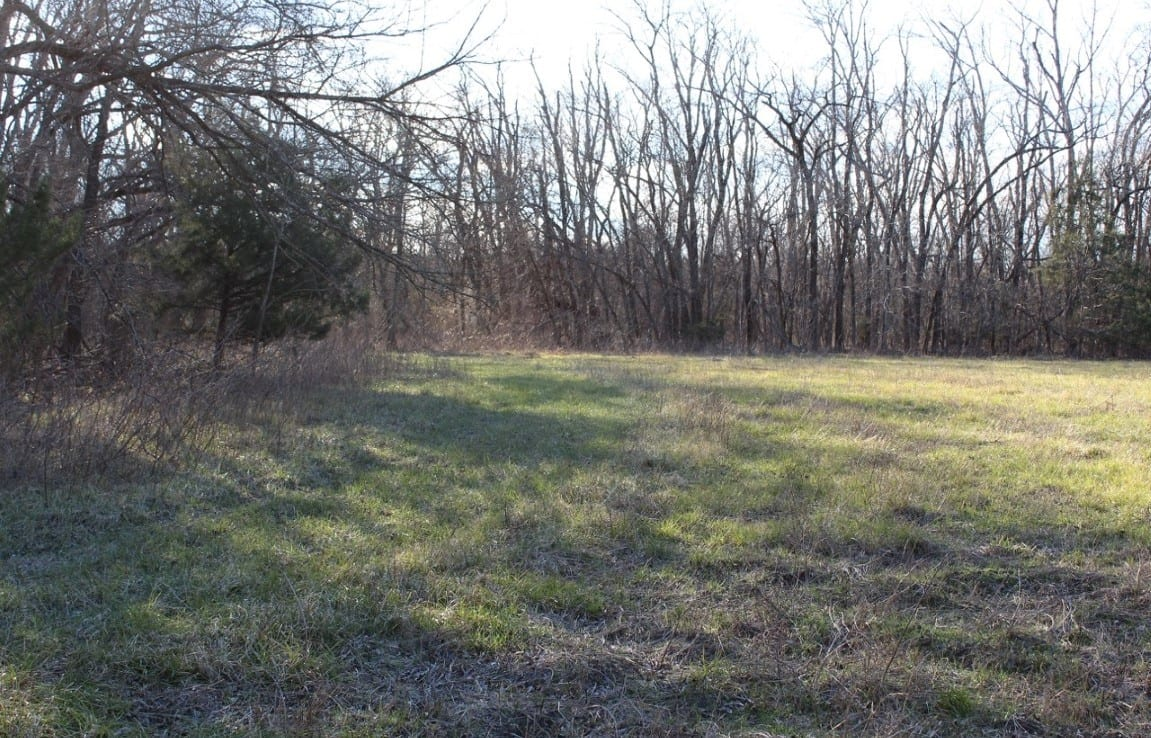 245 acres in Lamar County Texas for Sale