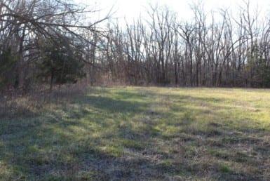 245 acres in Lamar County