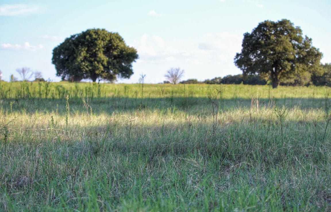 69 acres in Clay County