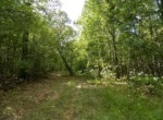 46 acres in Red River County