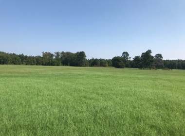 16 acres in Cass County