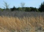 51 acres in Red River County