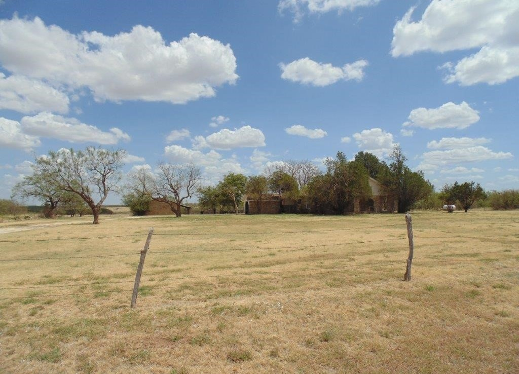 135 acres in Taylor County