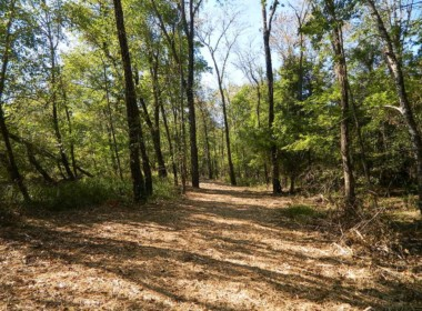125 acres in Red River County