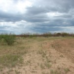 27 acres in Taylor County