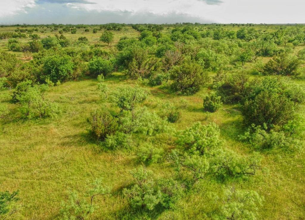 223 acres in Foard County