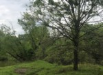 244 acres in Red River County