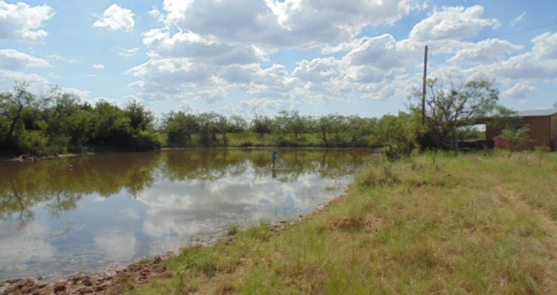 106 acres in Coleman County