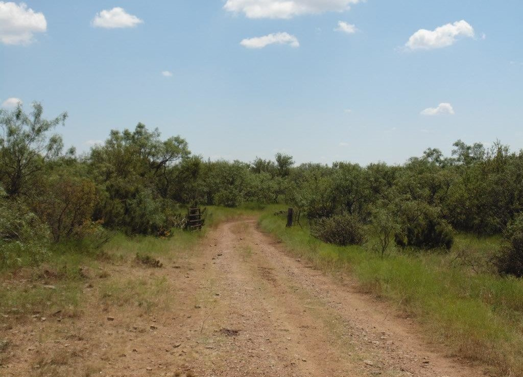 200 acres in Taylor County