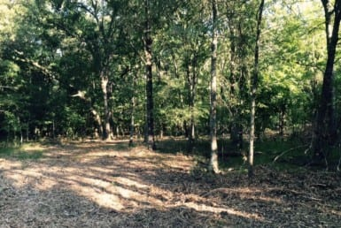 137 acres in Red River County