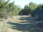 112 acres in Taylor County
