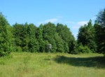 435 acres in Shelby County