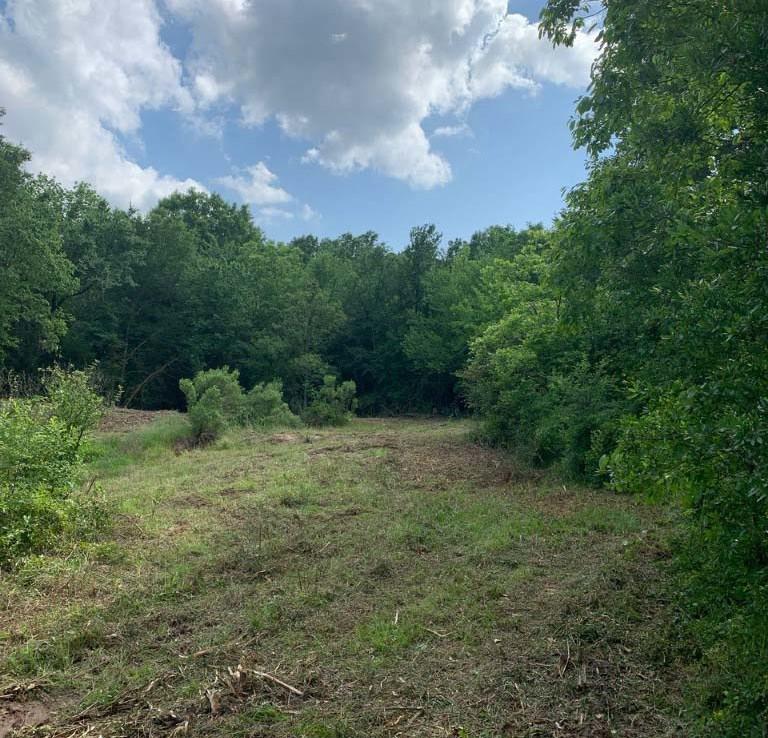 20 acres in Lamar County