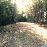 85 acres in Red River County