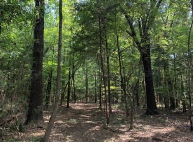 4 acres in Red River County