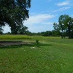 15 acres in Red River County