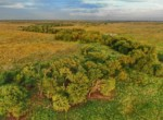 1,301 acres in Clay County