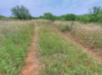210 acres in Wichita County