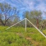 640 acres in Wilbarger County