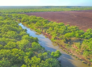 359 acres in Baylor County