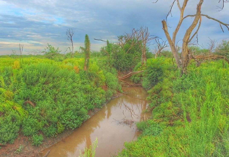 13,994 acres in Wichita County
