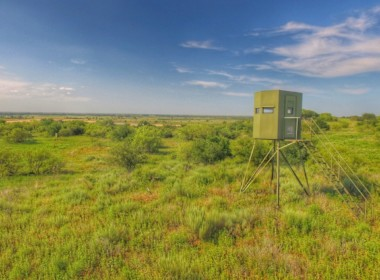 323 acres in Wilbarger County