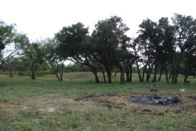 41 acres in Callahan County