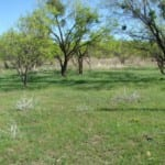 198 acres in Eastland County