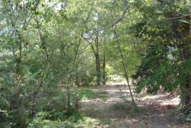 2 acres in Rains County