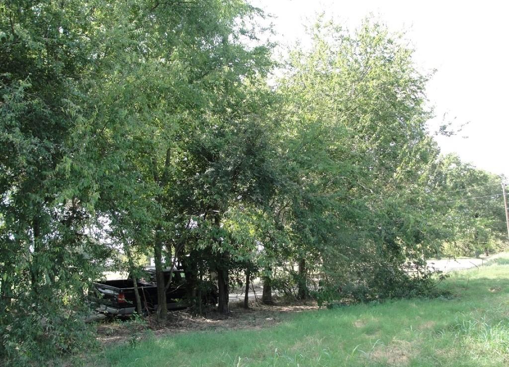 2 acres in Rains County