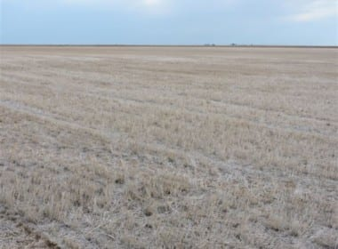 1,210 acres in Wilbarger/Wichita County